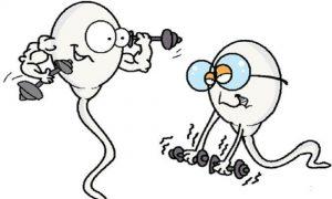 Tinh trùng yếu có màu gì | Tinh trùng có màu gì là bình thường